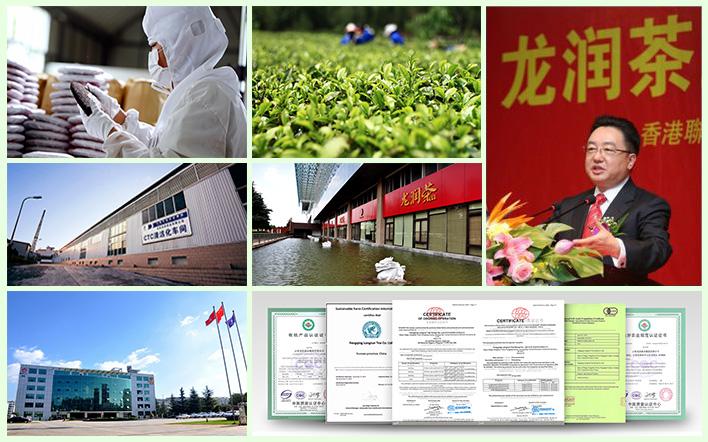 云南龙润茶业集团